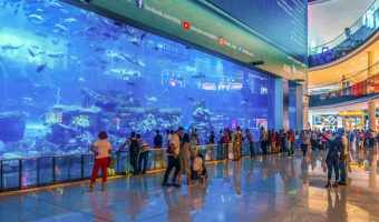 View of the Dubai Aquarium from Dubai Mall