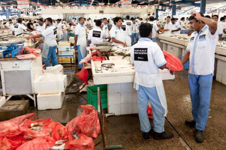 Salesmen selling fish at Deira Fish Market in Dubai