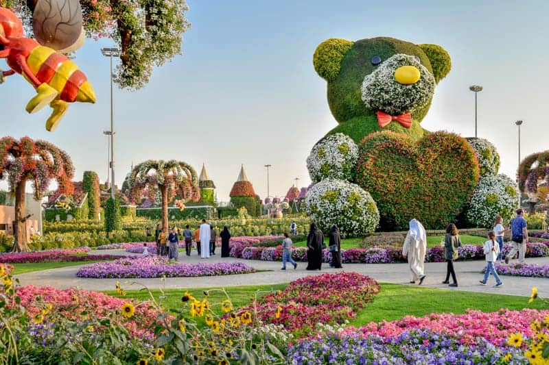 Teddy Bear floral display at Dubai Miracle Garden