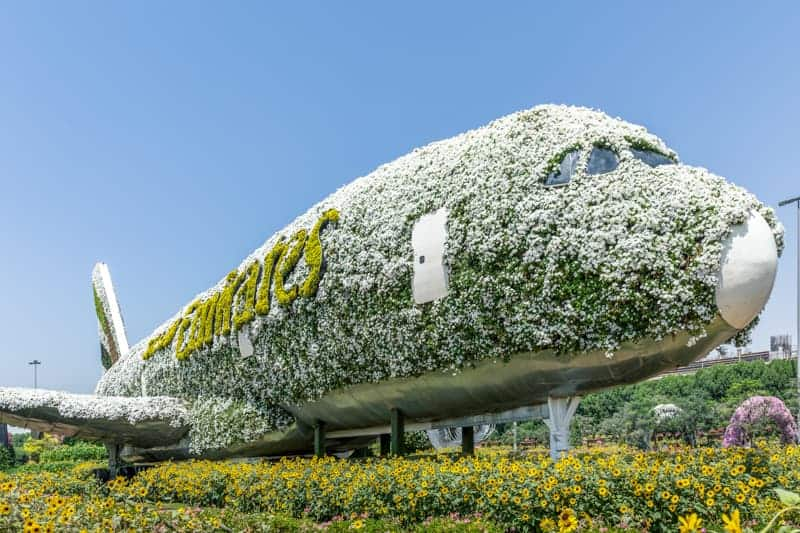 Airbus A380 display at Dubai Miracle Garden