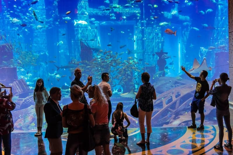 The Lost Chambers Aquarium at Altantis, Palm Jumeirah, Dubai