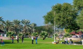 Lawn and BBQ areas at Dubai Creek Park